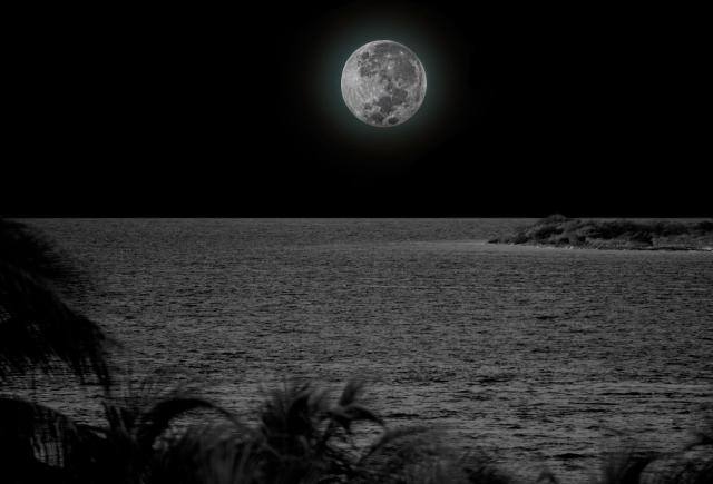 Super_Moon_11-15-2016.jpg